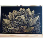 Art Drawing - Golden Waterlily - Flower - Nature