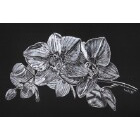 Art Drawing - Silver Orchid - Flower