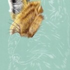 Art Drawing - Making of Fox Portrait 01 - Animal - Step 2