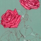Art Drawing - Making of Roses - Flower - Step 3